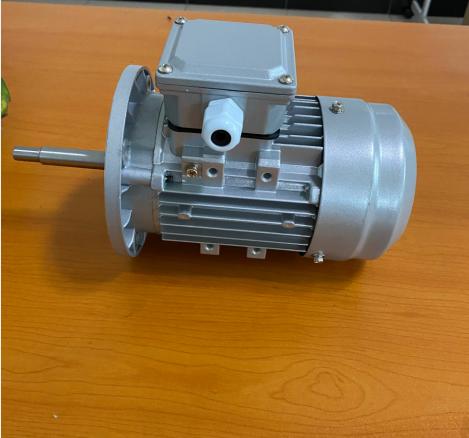 GS系列特制电机