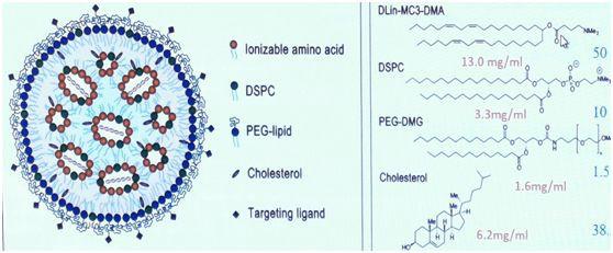 **磷脂分析之Patisiran脂质复合物注射液-艾伟拓(上海)医药科技有限公司