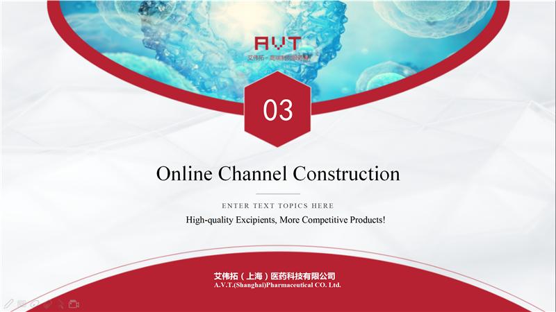 AVT Online Channel Construction