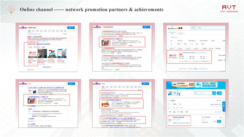 AVT Online channel —— network promotion partners & achievements