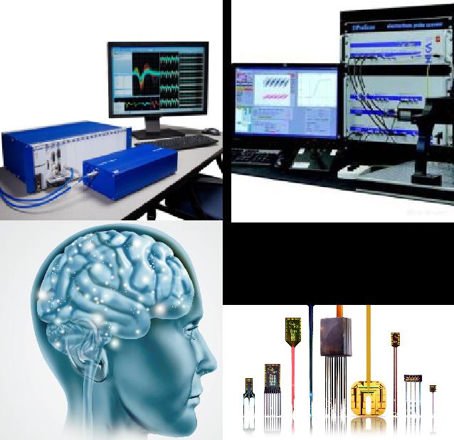 电生理平台