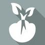 绿化苗木种植培育