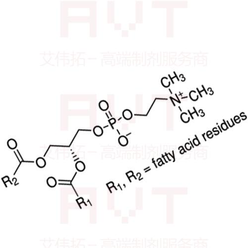 大豆磷脂SPC-98A丨8030-76-0