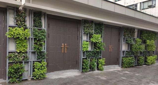 大家房产立体绿化案例
