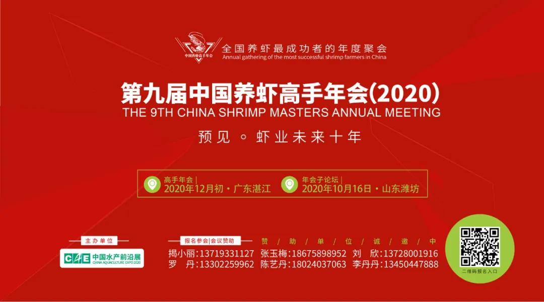 """工厂化、循环水…更多新""""玩""""法!养虾产值超200亿元的江苏焕发新活力"""