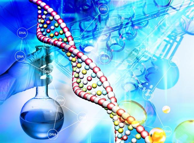 打败乳清蛋白大豆蛋白,藻蓝蛋白或成运动营养市场潜力股