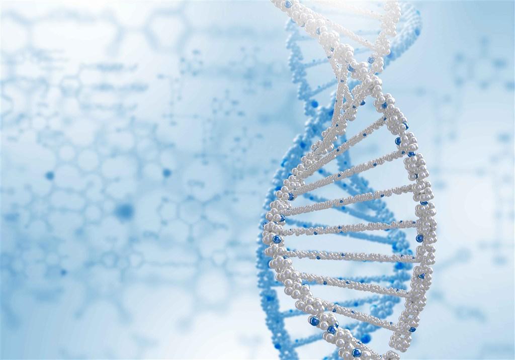 宾美藻蓝蛋白_螺旋藻藻蓝蛋白生理活性的研究进展_郝玮