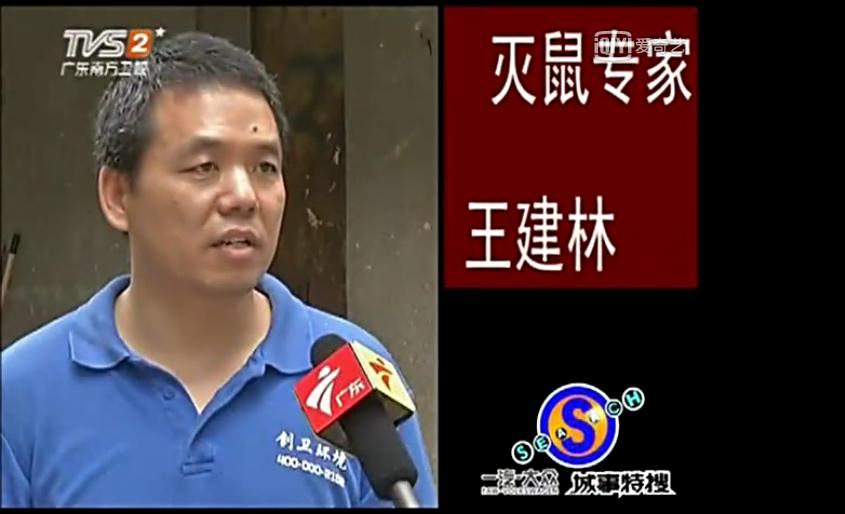 深圳灭鼠公司餐厅灭老鼠解决方案