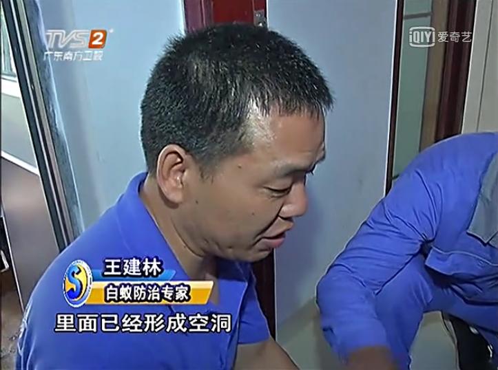 深圳灭白蚁公司