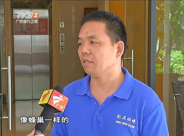 深圳防白蚁公司专业白蚁防治