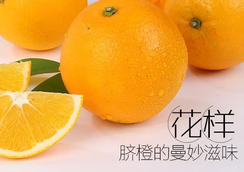 东坡9号脐橙
