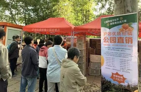 柑橘产业资讯