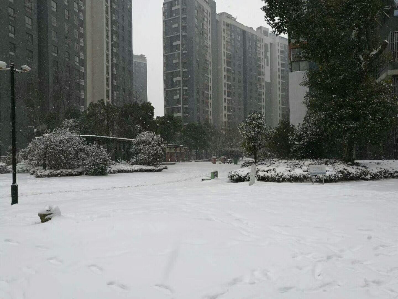 冰雪天开车注意事项_上海马陆驾校