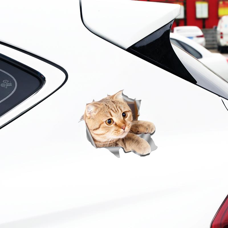 可爱萌萌反光猫偷窥车贴