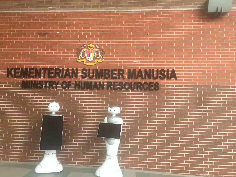 马来西亚佩佩机器人
