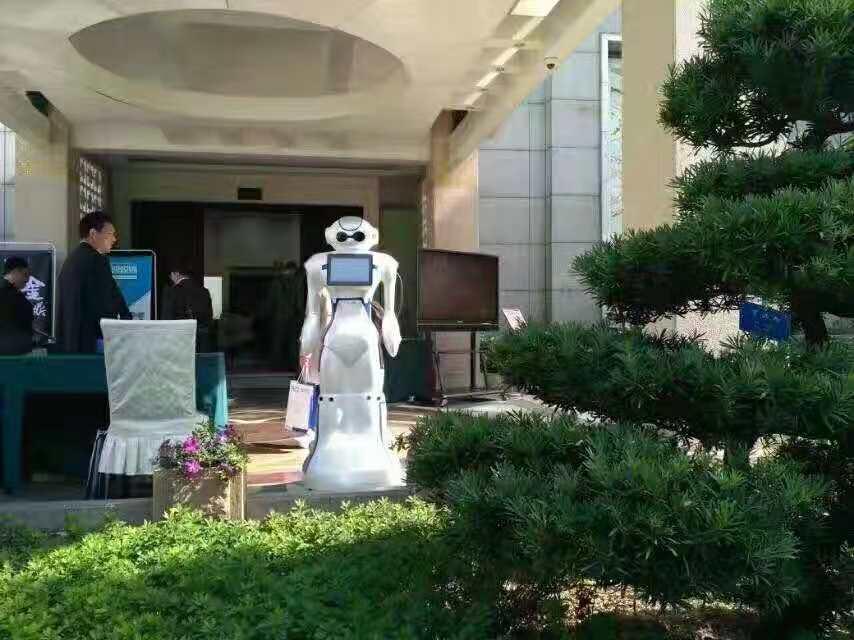 大白机器人广东企业社会责任报告案例