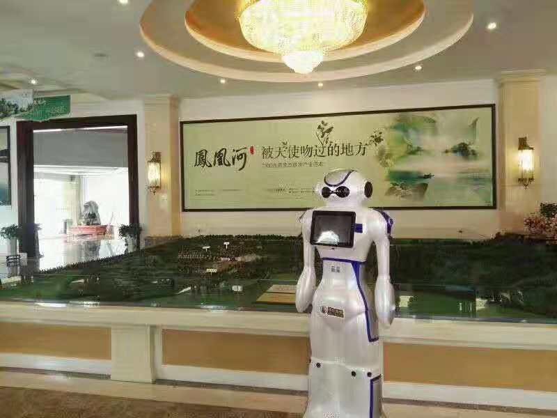 大白机器人凤凰河案例
