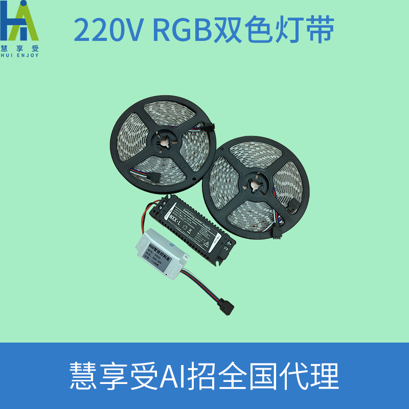 220V RGB双色灯带