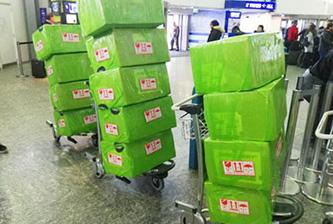 国内手提运输服务