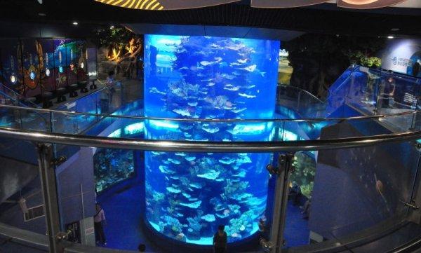 大型商场水族馆