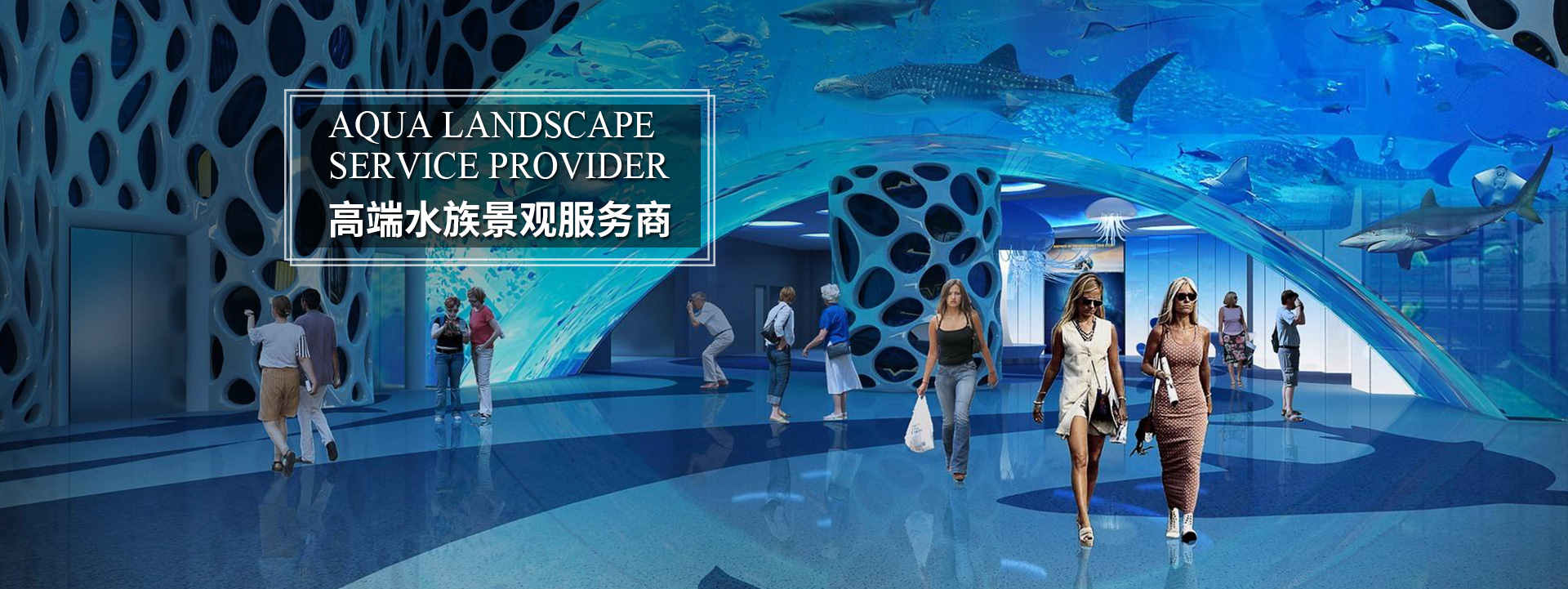 上海大型米乐体育手机版厂家