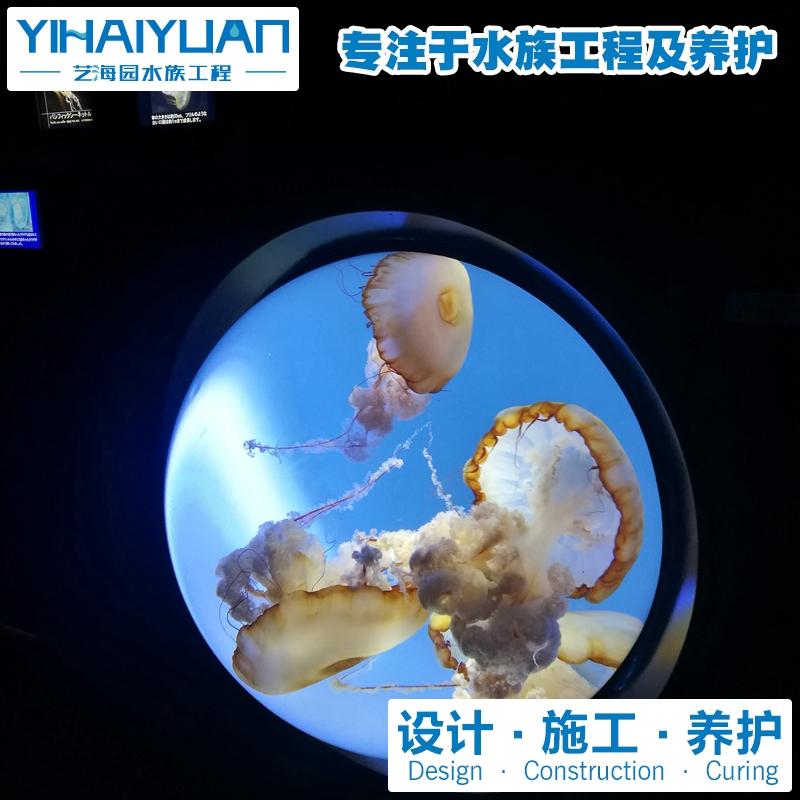 水母鱼缸定制