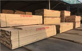 建筑木方供应商PK建筑木材加工厂
