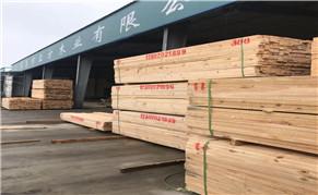 """木材行业乱象,潜江方木厂该如何做到""""洁身自好"""""""