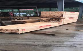 仙桃建筑工程方木如何处理才能更耐用?