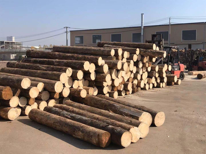 辐射松建筑木方原材料