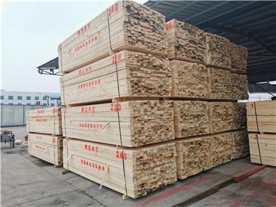 进口木材70年发展历程[硬核分享]