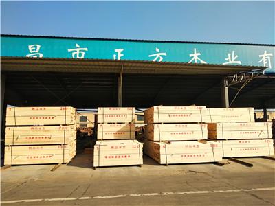 木材厂家货场