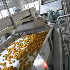枇杷汁生产线