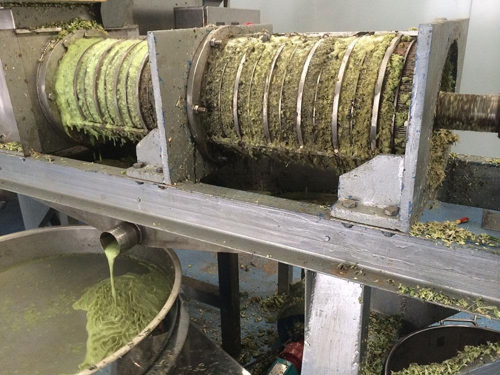 秋葵汁榨汁设备