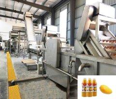 芒果汁生产线
