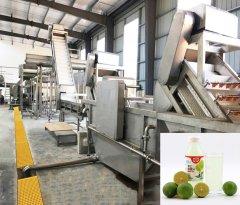 柠檬汁生产线