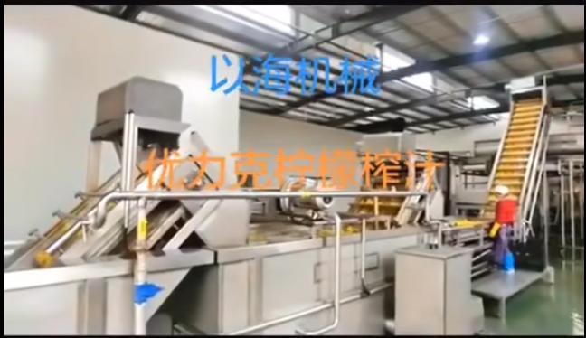 柠檬汁生产线前处理设备
