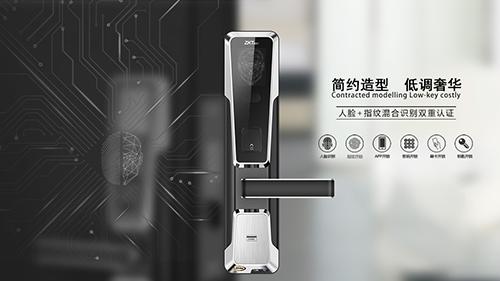 中安樂客人臉識別智能鎖專業制造商18617103853