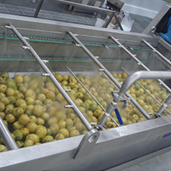 Apple, pear, strawberry, peach juice beverage production line