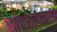 智慧农业1模型