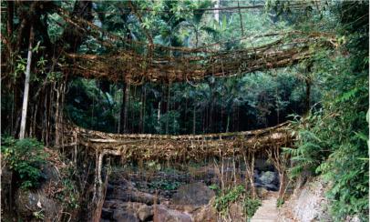 吊桥是如何搭建的