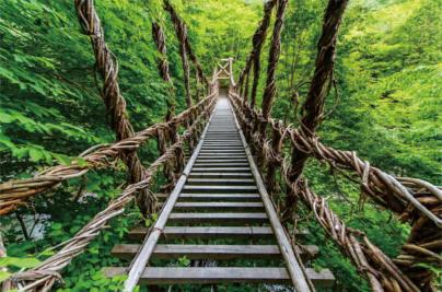景区吊桥还需要安装哪些