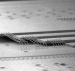 具有压敏切割胶带的管芯连接膜 ELEP MOUNT® (EM Series)