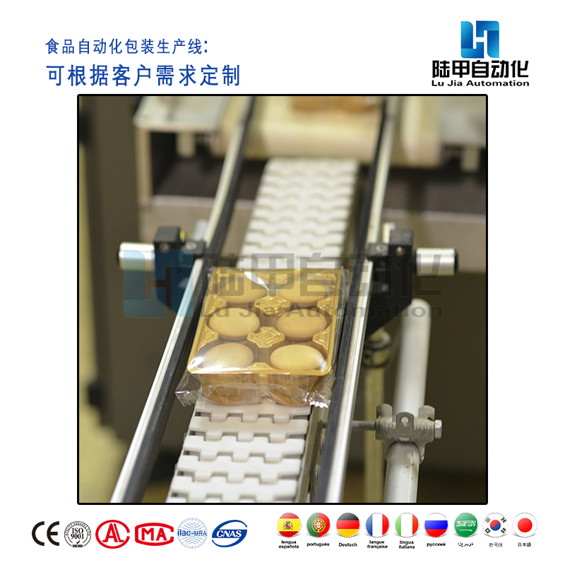 食品自动化生产线厂家