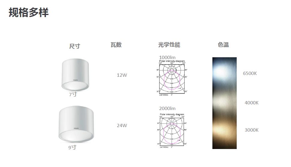 飞利浦明装筒灯DN003C