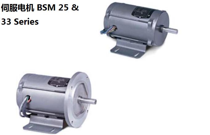 伺服电机 BSM 25 & 33 Series