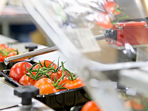 果蔬氣調包裝案例
