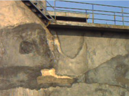 东莞市沙田污水处理池防水补漏