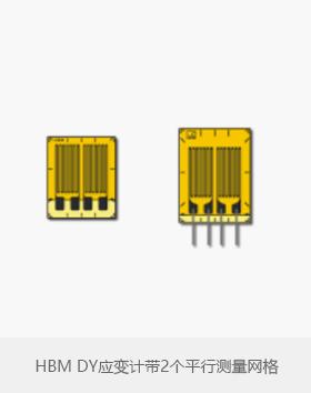 HBM DY系列应变计带2个平行测量网格