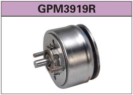 GPM3919R